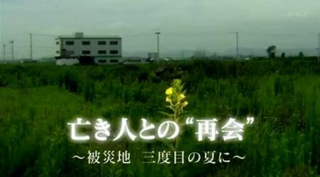 NHKスペシャル東日本大震災再会幽霊.png